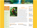screenshot of Costa Rica Tours -  Hotels and Fishing Vacations