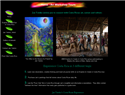 screenshot of Costa Rica Art and Workshop Tours