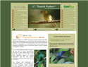screenshot of Costa Rica Birding Tours - Tropical Feathers